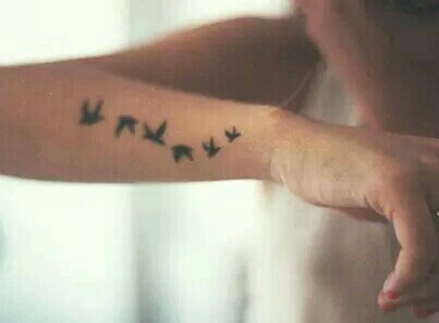 birds, fly, and girl image