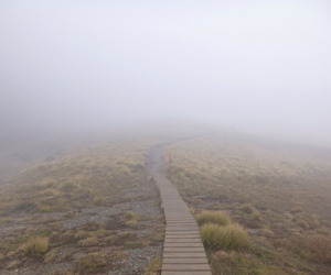 cold, fog, and hike image