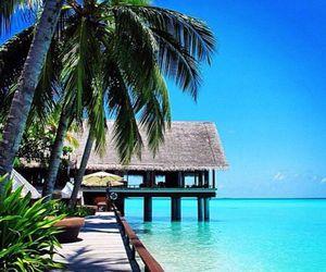 beach, resort, and paradise image