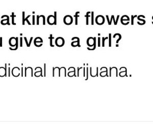 flowers, stoner girl, and high life image