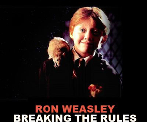 harry potter, ron weasley, and rat image
