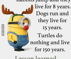 minions, funny, and lesson image