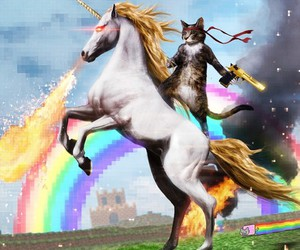 unicorn, cat, and rainbow image