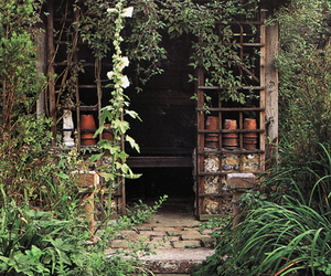 garden and garden shed image