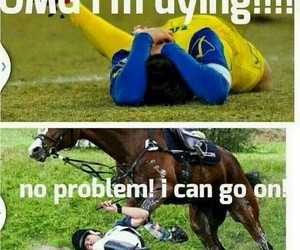 horse, football, and true image