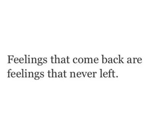feelings, love, and quotes image