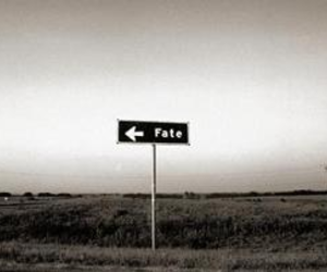 b & w, road signs, and black and white image