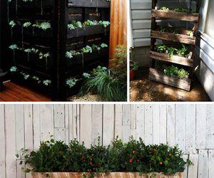 garden decor, garden planter, and pallets garden ideas image