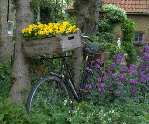 bike, color, and flowers image