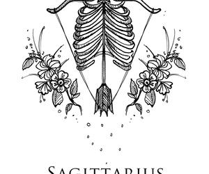 Sagittarius, zodiac, and horoscope image