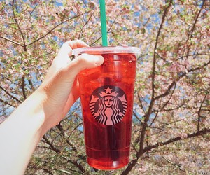 iced tea, starbucks, and teavana image