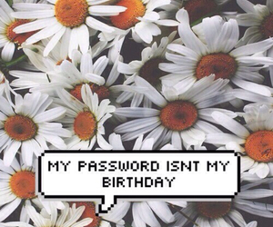 flowers, wallpaper, and password image