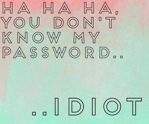 password, idiot, and wallpaper image