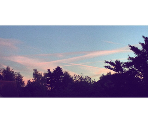 blue sky, spring, and sunset image