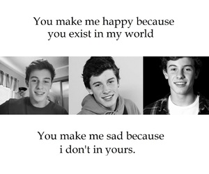 mendes, quotes, and shawn image