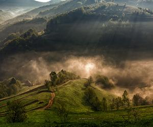 fog, inspiration, and life image
