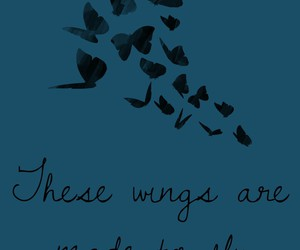 black, wings, and blue image