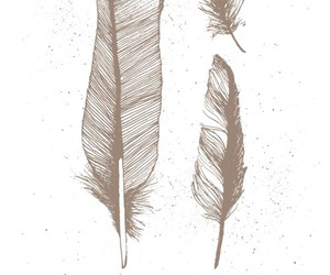 feathers and god image