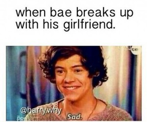 funny, bae, and Harry Styles image