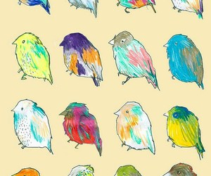 bird, background, and wallpaper image
