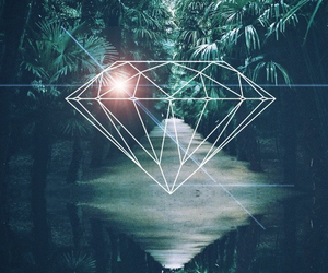 diamond, wallpaper, and forest image