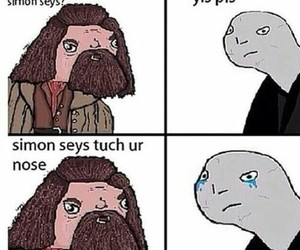 funny, harry potter, and hagrid image