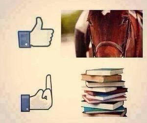 horses, love them, and no homework image