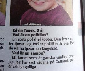 svenska, swedish, and politiker image