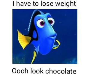 chocolate, weight, and funny image