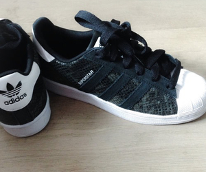 adidas, snake, and superstar image