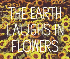 quote, delias, and flowers image