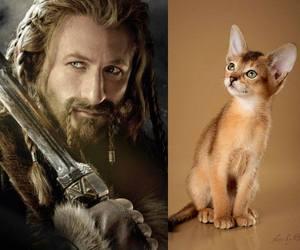the hobbit and fili image