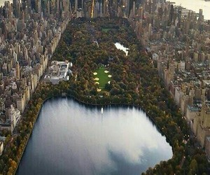 Dream, nyc, and park image