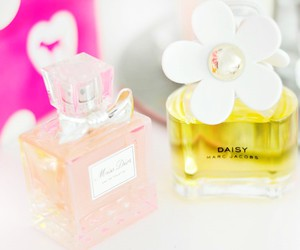 beauty, daisy, and fashion image