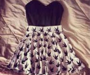 birds, black and white, and dress image