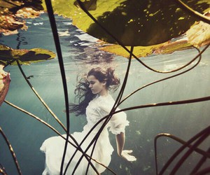 water, underwater, and photography image