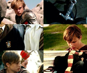 gryffindor, harry potter, and peter pevensie image