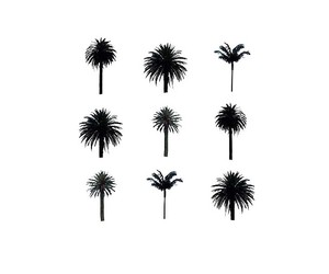 palm trees, art, and summer image