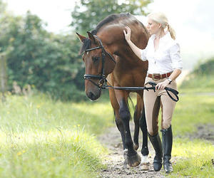 equestrian, horse, and breeches image
