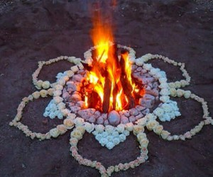 fire, flowers, and beach image
