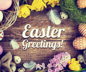 easter, eggs, and greetings image