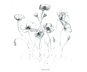 black and white, drawing, and flowers image