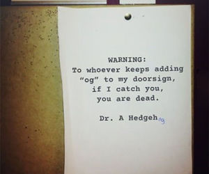 funny, doctor, and hedgehog image