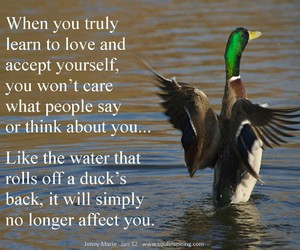quote, duck, and learn image
