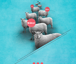design, sheep, and typography image