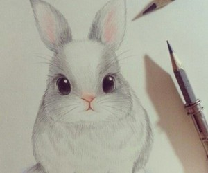 drawing, cute, and rabbit image