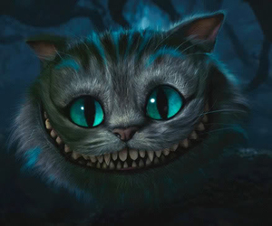 cat, alice in wonderland, and alice image