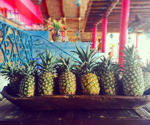 summer, fruit, and pineapple image