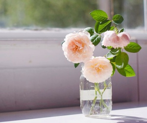 floral, pink, and shabby chic image