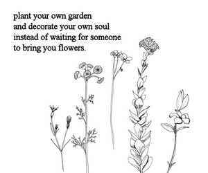 flowers, quotes, and garden image